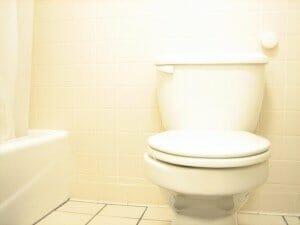 toilet-1552924