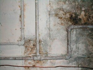 How to Check Your Pipes for Corrosion and Scale Issues