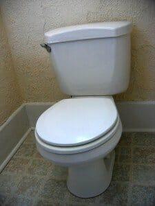 toilet-1493961